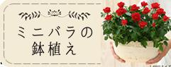 京阪園芸ガーデナーズ