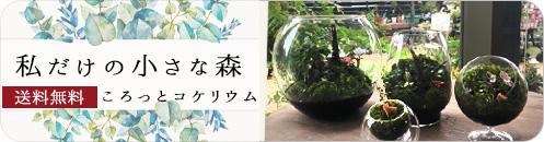 京阪園芸オリジナル 泡ハンドソープ
