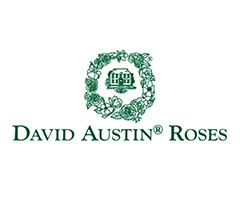 デビッドオースチン DAVID AUSTIN ROSES