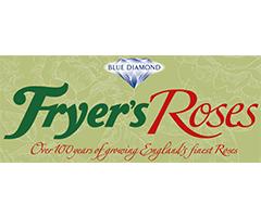 フライヤーローゼス Fryer's Roses