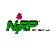 ニルプ NIRP